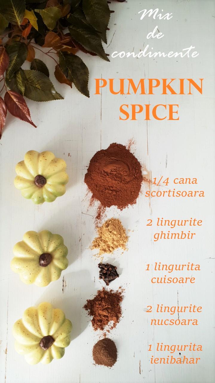 amestec de condimente pumpkin spice
