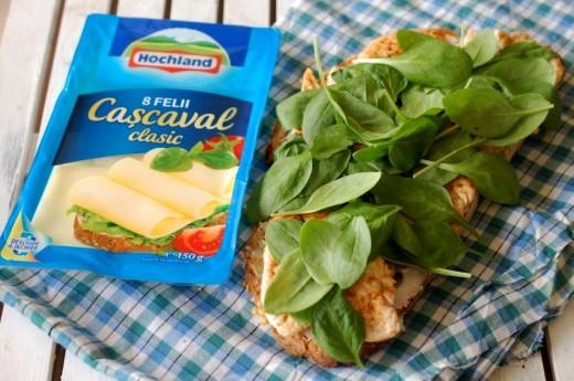 Cascaval Hochland si baby spinach