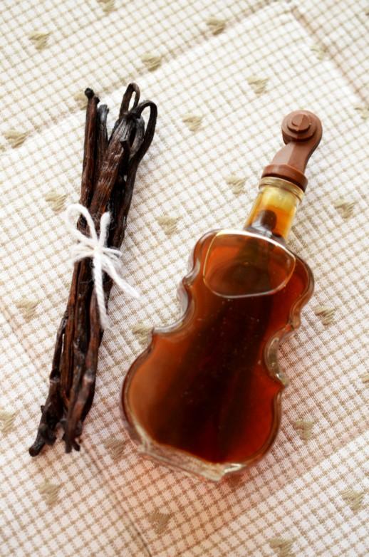 esenta de vanilie facuta in casa