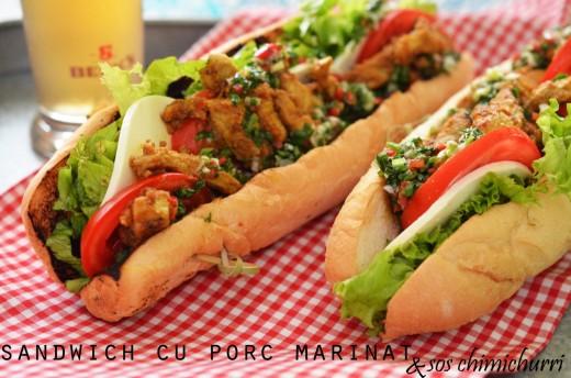 sandwich cu porc marinat si sos chimichurri